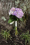 Wedding Bouquet Against a Tree. Wedding bouquet sitting against a tree Royalty Free Stock Image