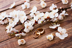 Wedding bouquet background. royalty free stock photography
