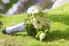 Wedding bouquet on background Royalty Free Stock Image