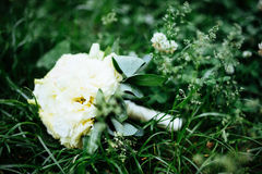 Wedding bouquet of bride - colorful flowers. Stock Image