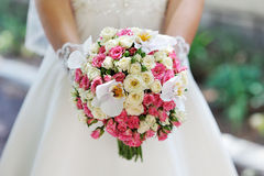Wedding bouquet at bride's hands. studio shot Stock Photography