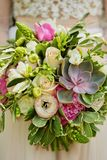 Wedding bouquet in the bride`s hands, succulents royalty free stock photography