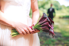 Wedding bouquet of Calla. Bouquet of purple flowers. Royalty Free Stock Photos