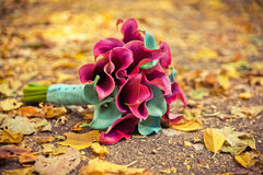 Wedding bouquet of colored callas Royalty Free Stock Image