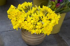 Wedding bouquet of daffodils in a ceramic vase stock image