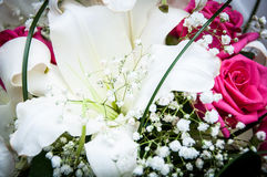 Wedding bouquet of flowers. Beautiful flowers for a wedding bouquet Royalty Free Stock Images