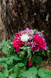 Wedding bouquet of flowers. Beautiful flowers for a wedding bouquet Royalty Free Stock Photography