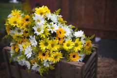 Wedding bouquet flowers yellow and white daisies.  Stock Photos