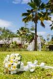 Wedding bouquet of frangipani Stock Photos