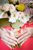 Wedding bouquet in hands of bride. Bride in a red dress Stock Photography