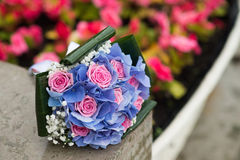 Wedding bouquet with hydrangea and pink roses. Outdoor Royalty Free Stock Photos