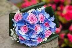 Wedding bouquet with hydrangea and pink roses. Outdoor Stock Images