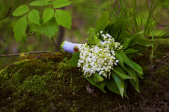 Wedding bouquet lily of the valley stock photography