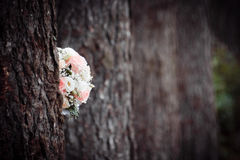 Wedding bouquet on the nature of the trees. Wedding Royalty Free Stock Photography
