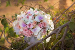 Wedding bouquet of orchids and roses. Wedding bouquet made of roses and orchid royalty free stock image
