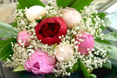 Wedding bouquet with peonies. Wedding bouquet with white, red and pink peonies Royalty Free Stock Photos