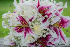 Wedding bouquet of pink fuchsia flowers Royalty Free Stock Photos