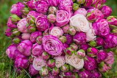 Wedding bouquet with pink rose Stock Photos