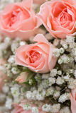 Wedding bouquet of pink roses Royalty Free Stock Image