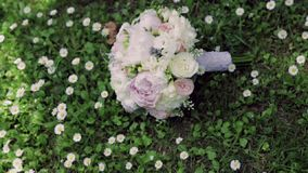Wedding bouquet of pink roses and peonies lying on the green grass, surrounded by chamomiles. No people around. Outside stock video footage