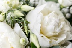 Wedding bouquet with rain drops. Morning at wedding day at summer. Beautiful mix white peonies and eucalyptus Stock Photography