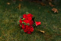 Wedding bouquet with red roses and green berries lying on a green grass. bouquet. Wedding bouquet with red roses and green berries lying on a green grass stock image
