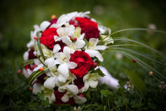 Wedding bouquet of red roses lying on the grass. Wedding bouquet of red roses and white flowers lies on the grass Royalty Free Stock Photography