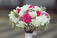Wedding bouquet and rings. Wedding bride with wedding bouquet Royalty Free Stock Image