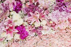 Wedding bouquet with rose bush, Ranunculus asiaticus as a backgr Royalty Free Stock Photo