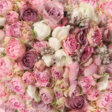 Wedding bouquet with rose bush Stock Photos