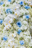 Wedding bouquet with rose bush Royalty Free Stock Photography
