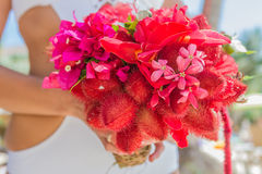 Wedding bouquet from tropical flowers in bride's hans on n Stock Photography