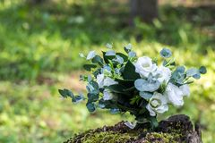 Wedding bouquet of white flowers on the wood stump outdoors.  Stock Photo