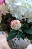 Wedding bouquet of white and pink flowers Royalty Free Stock Photo