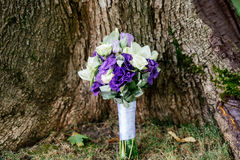 Wedding bouquet of white and purple flowers. Under the tree Royalty Free Stock Images