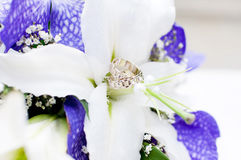 Wedding Bouquet with white and violet flowers. Rings Stock Photos