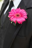 Wedding boutonniere Stock Photography