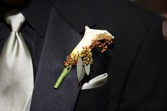 Wedding Boutonniere. Pinned on the collar of a black wedding suit with silver tie and handkerchief Royalty Free Stock Photography