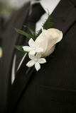 Wedding boutonniere. White rose wedding boutonniere on suit of groom stock photos