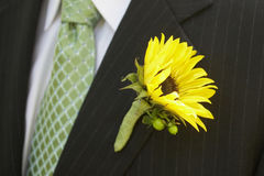 Wedding Boutonniere Stock Image