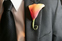 Wedding Boutonniere Royalty Free Stock Photography