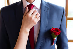 Wedding boutonniere, A brides hand on groom tie Royalty Free Stock Photos