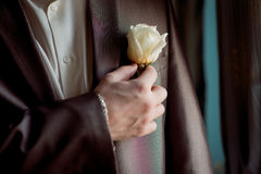 Wedding boutonniere. On a man's suit Stock Images