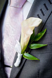 Wedding boutonniere on suit Royalty Free Stock Image