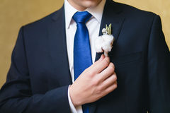 Wedding boutonniere on suit Stock Photography