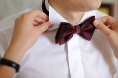 Wedding Bow Tie Royalty Free Stock Photography