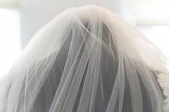 Wedding bridal вуаль Стоковая Фотография RF