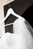 Wedding bridal вуаль Стоковое фото RF