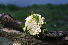 Wedding bridal bouquet on nature Royalty Free Stock Photo