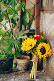 Wedding bridal bouquet of sunflowers on a metal fence. Wedding i Stock Images
